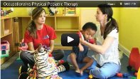 Physical vs Occupational Therapy